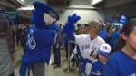 Fans gathered at the Rogers Centre for the Blue Jays 2017 Winter Tour on Saturday.