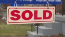 sold, real estate, housing market