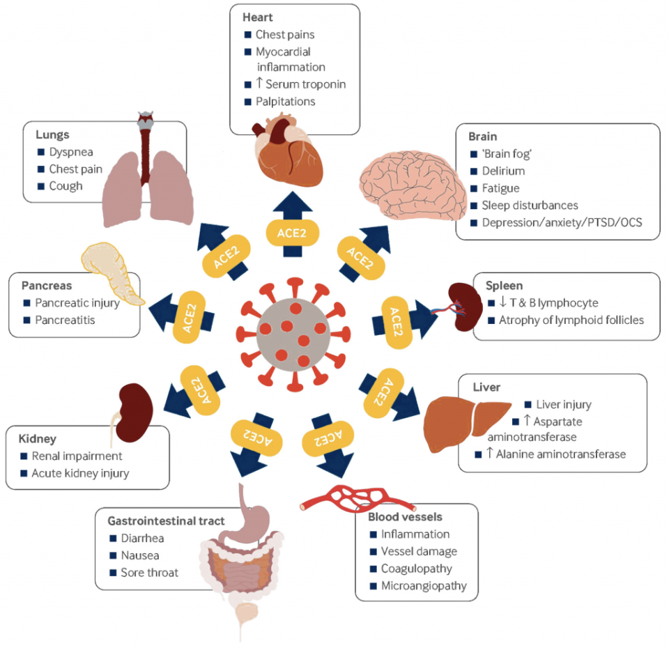 Impact of COVID-19 and Post-COVID Condition