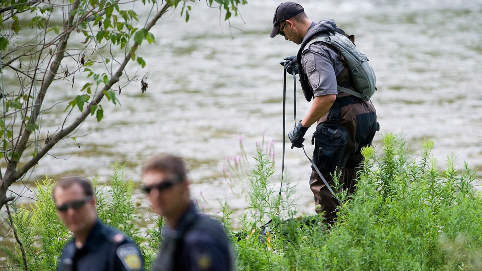 A police search dog unit searches the banks of the Credit River in Hewick Meadows Park in Mississauga, Ont., after police discovered a female severed head on Thursday Aug.16, 2012.  (Aaron Vincent Elkaim /  THE CANADIAN PRESS)
