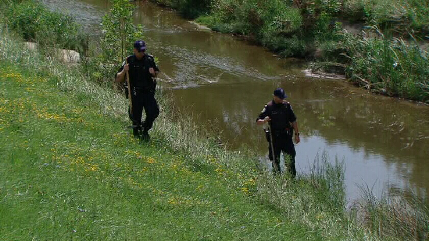 Police are shown searching in the area where human remains were discovered in Scarborough Ont. on Sunday, Aug. 19, 2012.