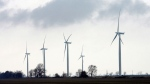 It was an overcast day for the opening of a 44-turbine wind farm near Port Alma, Ont.,Thursday, Nov. 13, 2008. (Dave Chidley / THE CANADIAN PRESS)