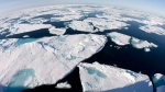 Ice floes float in Baffin Bay above the Arctic circle from the Canadian Coast Guard icebreaker Louis S. St-Laurent on July 10, 2008. (Jonathan Hayward / THE CANADIAN PRESS)