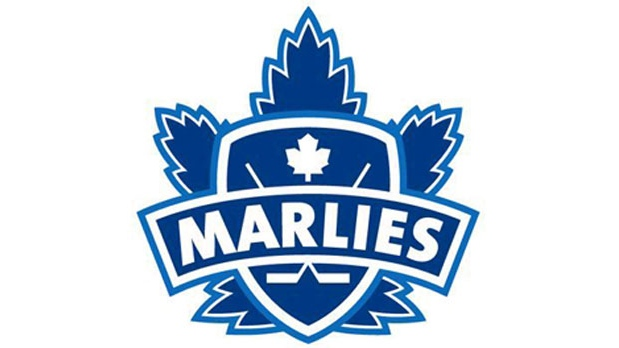 Marlies pledge to fight homophobia in sports